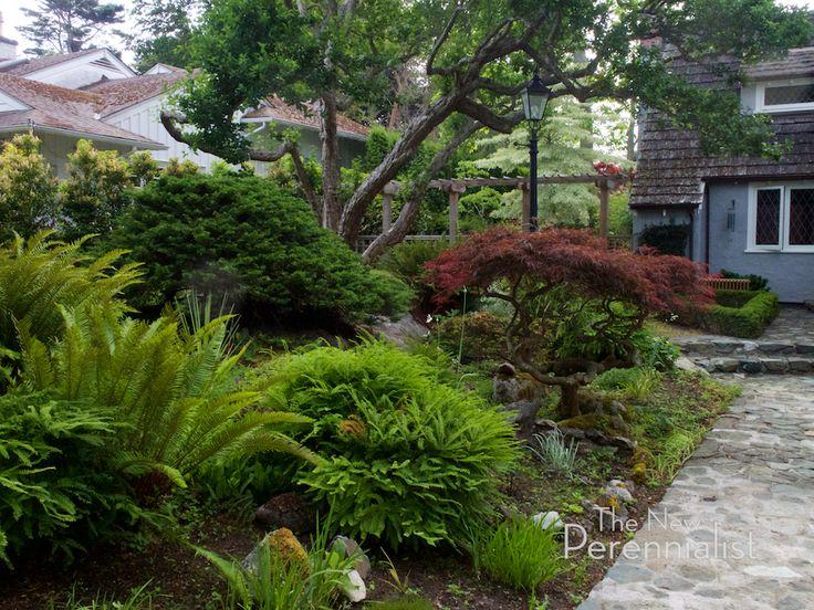 342 besten Garten Bilder auf Pinterest Garten, Westküste und - indoor garten anlegen geeignete pflanzen