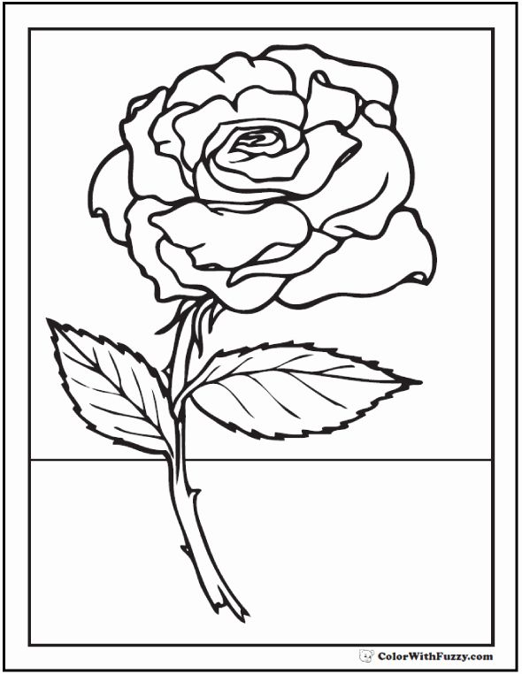 Roses Coloring Books Beautiful 73 Rose Coloring Pages Customize Pdf Printables Rose Coloring Pages Coloring Pages Flower Coloring Pages