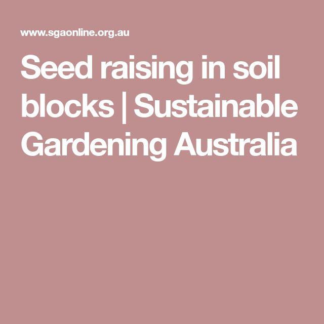 Seed raising in soil blocks   Sustainable Gardening Australia