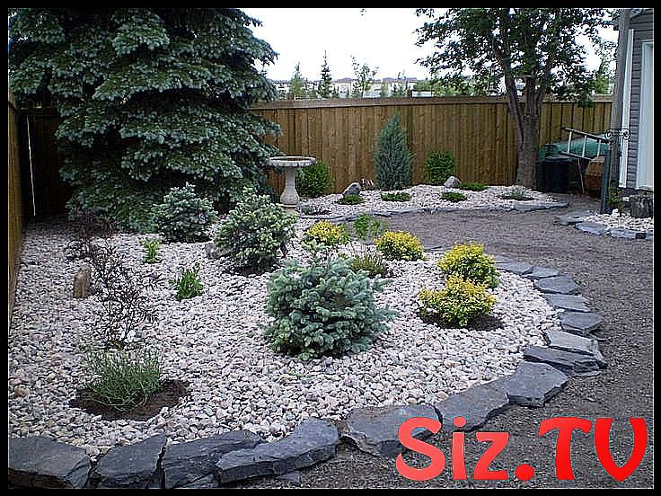 Low Maintenance Landscaping Xeriscaping 2019 Low Maintenance Front