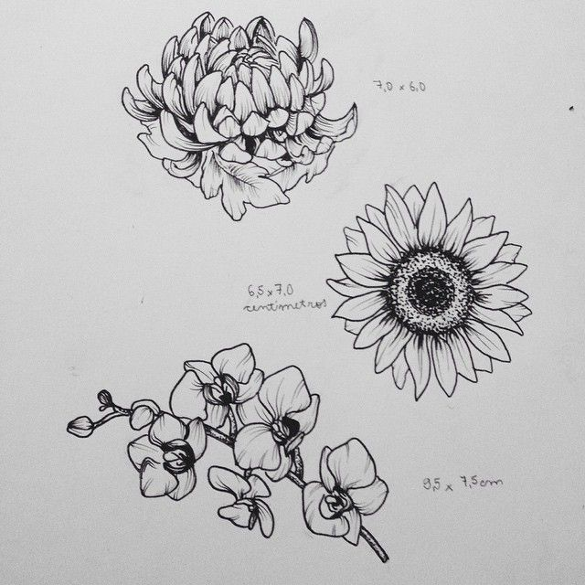 crisântemo, girassol e orquídeas  tattoos disponíveis! flores que se interessarem contatem por inbox no facebook (lembrando que cada uma terá somente 1 dona)