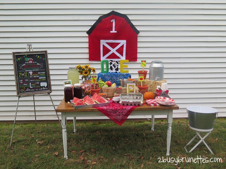 Farm First Birthday Party