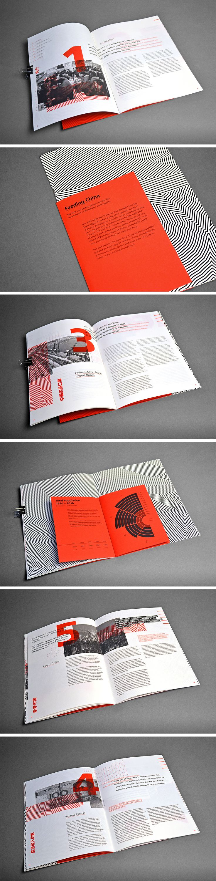 Feeding China #print #brochure #design