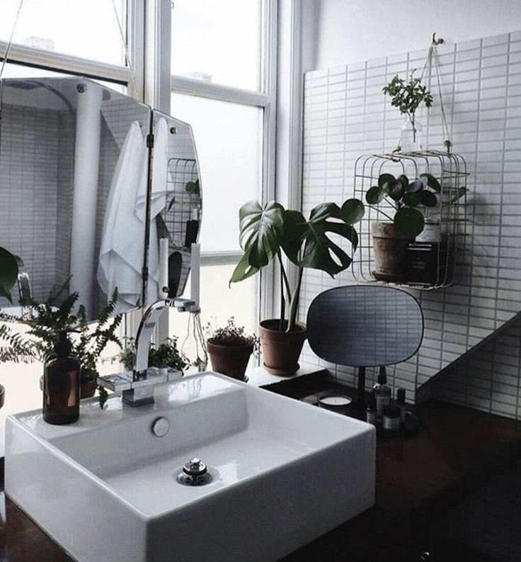 Interior trend: una giungla in casa | Una Casa Così