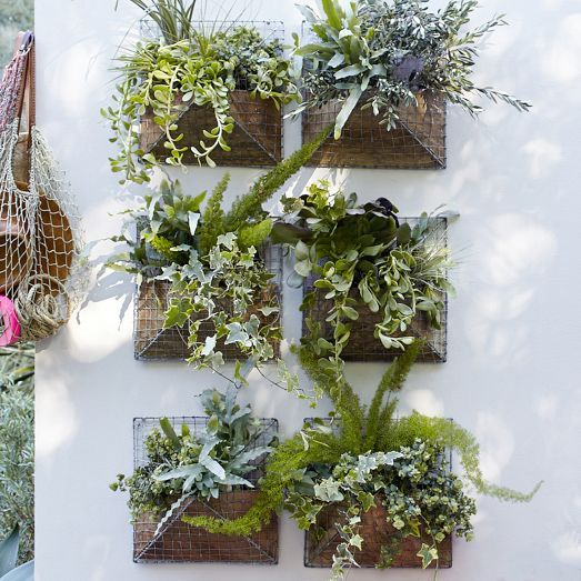 Made Of A Galvanized Wire Frame The Pyramid Wall Planter