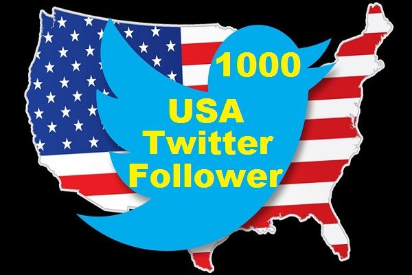 Special USA Targeted Twitter Offer for $5