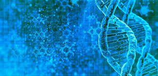 PEUT-ON DIRE QUE DIEU CRÉE PAR L'ÉVOLUTION ? L'évolution exprime beaucoup mieux la conception biblique de création que la théorie de la création séparée des espèces.