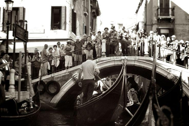 Wedding In Venice - Adoring Fans
