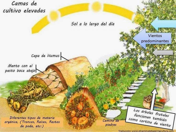 cama-de-cultivos-elevados.jpg (736×552)