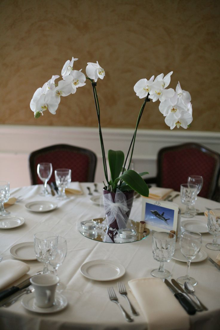 Orchid centerpieces wedding pinterest