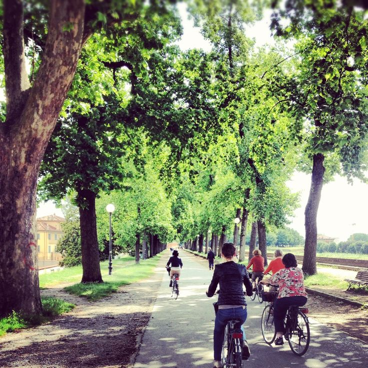 Cycling the divine walled city of Lucca. June 2013 Deep Rest retreat. xx Carole