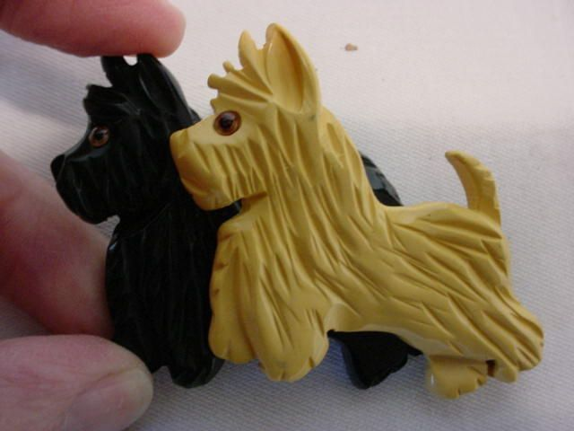 pin coolest scottie - photo #11