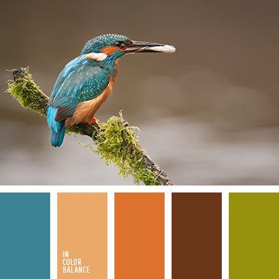 anaranjado y anaranjado oscuro, anaranjado y marrón, anaranjado y naranja, anaranjado y turquesa, anaranjado y verde, colores naranja y anaranjado, marrón y anaranjado, marrón y turquesa, marrón y verde, turquesa y anaranjado, turquesa y marrón, turquesa y verde, verde y