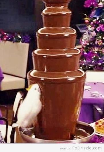 There's not limit to what you can dip in a chocolate fountain...