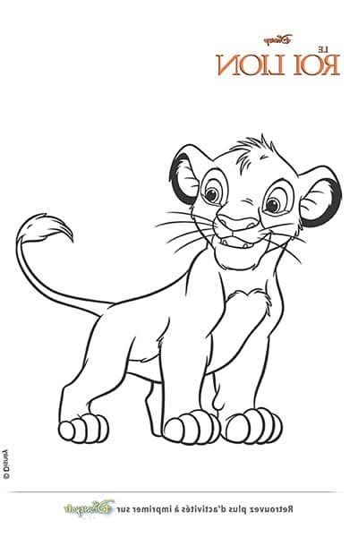 9 Premium Le Roi Lion Coloriage Pictures Avec Images Lion