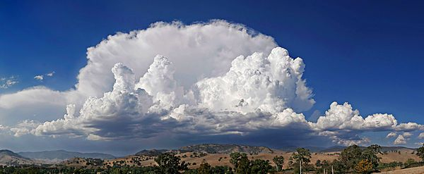 Cumulonimbus - Wikipedia