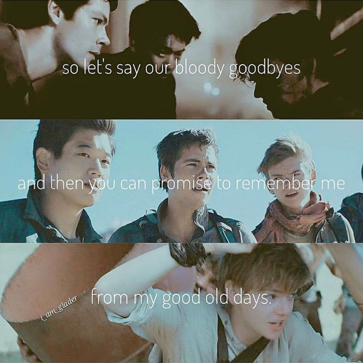 why is this one of the absolute saddest edits of newt it hurts. well done to the creation