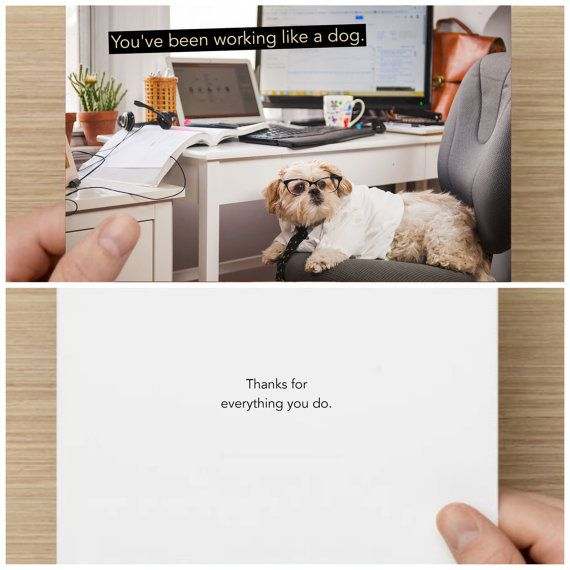 "The Frumpy Dog Thank You Card: ""You've been working like a dog Thanks for everything you do"""