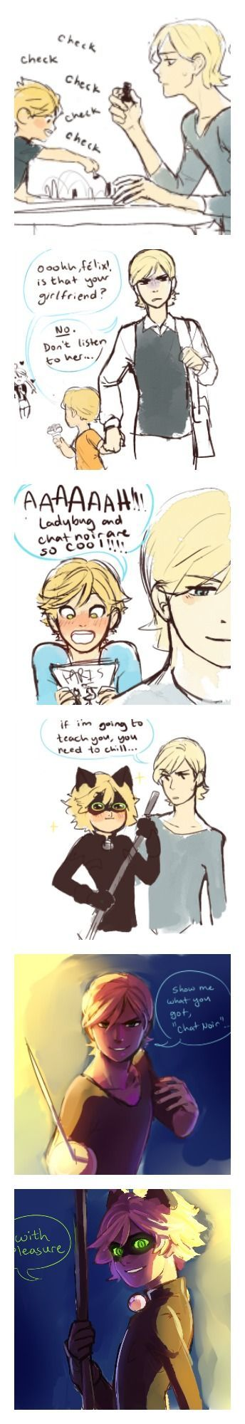 An AU where Felix is Adrien's older brother! (Miraculous Ladybug)