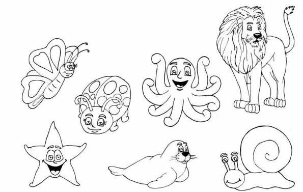 Dibujos De Animales Terrestres Para Colorear E Imprimir: Animales Vertebrados E Invertebrados Para Colorear