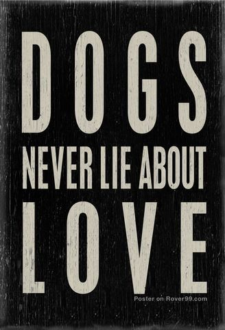 Dogs never lie... ☆