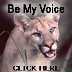 Florida Panther facts, Florida Panther photos, Florida Panther videos and Florida Panther news