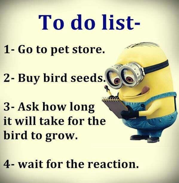 Funny I Ll Be Waiting Meme : Wonder how long i ll be waiting minions ☺ pinterest