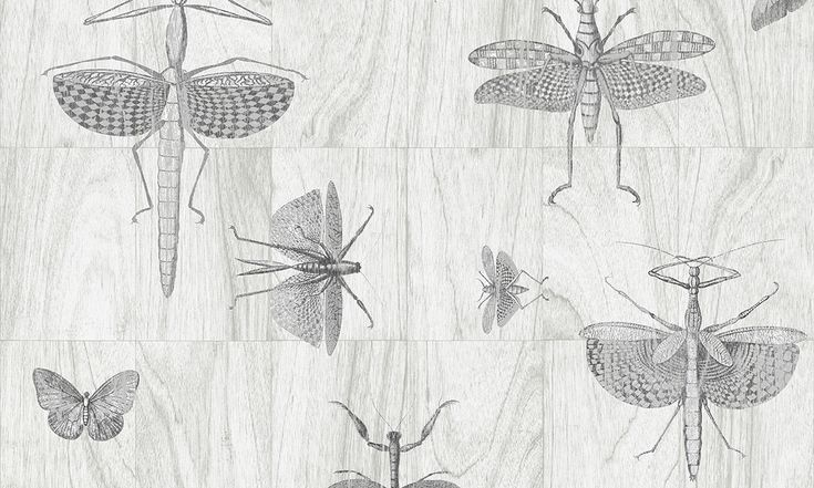 Wings | Ligna wallcovering inspired by the forest | Collections | Arte wallcovering
