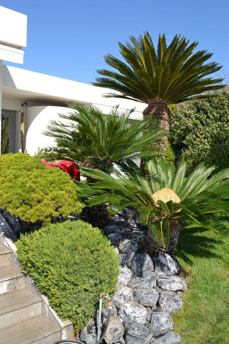1000 id es sur le th me cr ation de jardin contemporain sur pinterest design jardin jardins - Jardin contemporain pente marseille ...