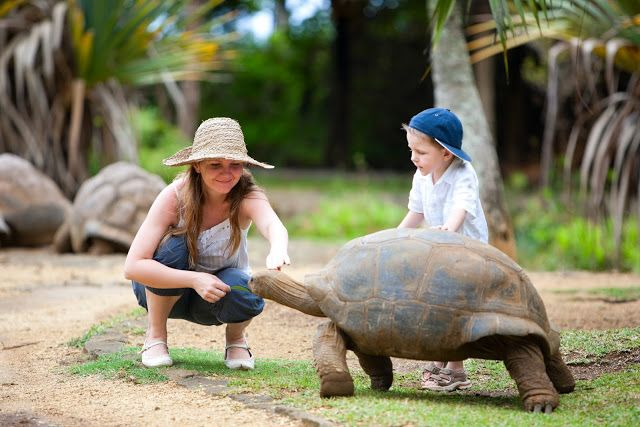 Missing Sleep: Mauritius: 3 Great Attractions for Kids