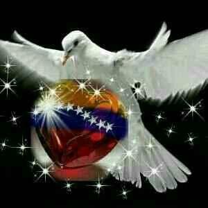 Resultado de imagen para imagenes de paz para venezuela