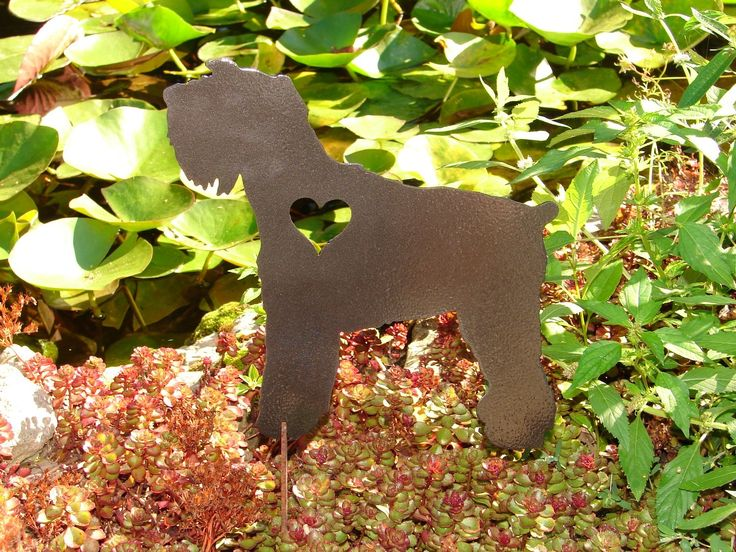 Miniature Schnauzer Pet Dog Memorial GARDEN STAKE Yard Lawn Decor