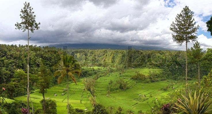Panorama Of Valley With Rice Field Terraces And View Stock Photo