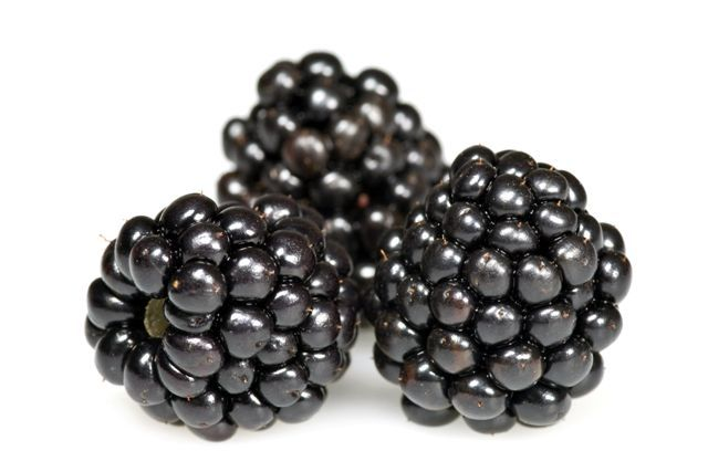 The sweet tangy flavor of blackberries has become a summer favorite. Now you can enjoy this delicious taste year round. And only for $4.99 (USD)