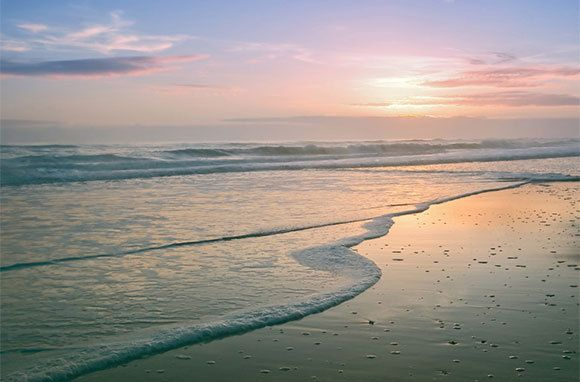 Playalinda Beach in Florida. Another hidden gem of the state's coastline. Love going here. Never very crowded. ~Jodie