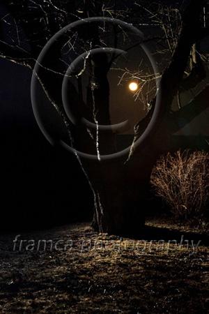Big moon  framcaphotography.com