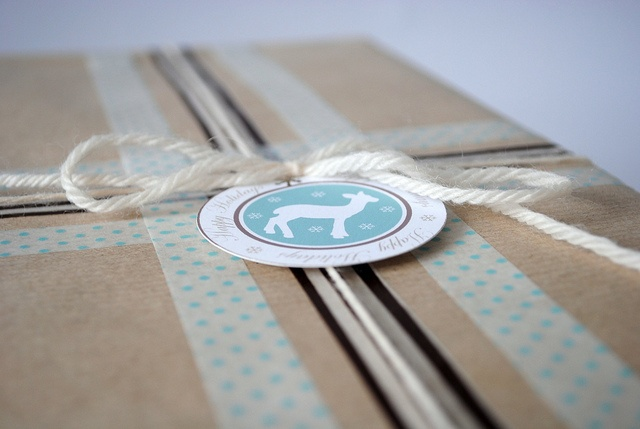 Kraft paper + Washi tape + string. So lovely. Comes from the Torie Jayne Blog. http://toriejayne.blogspot.com/2011/01/my-gift-wrapping.html