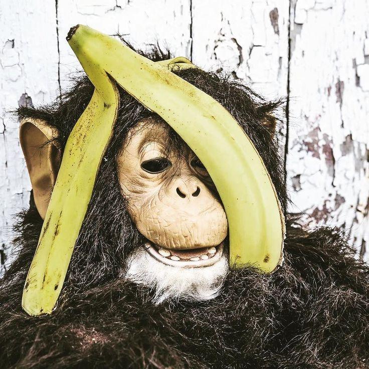 Buenos Airesteki 140 yıllık hayvanat bahçesi hayvanların esaret altında tutulması ve sergilenmesinin aşağılayıcı bir durum olduğunun düşünülmesi üzerine kapatılıyor. Ne diyelim! Darısı diğerlerinin başına... #animals #wwf #haytap