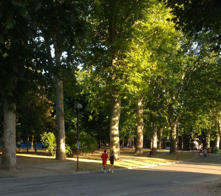 Parco della Montagnola Bologna