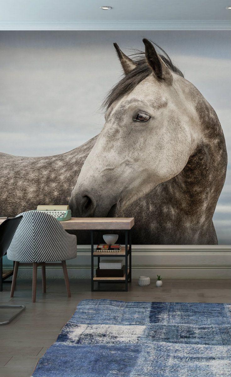 Fantastic Wallpaper Horse Wall - 202ebcd321970b54bab87c497498063c--wallpaper-murals-wall-murals  Picture_44339.jpg