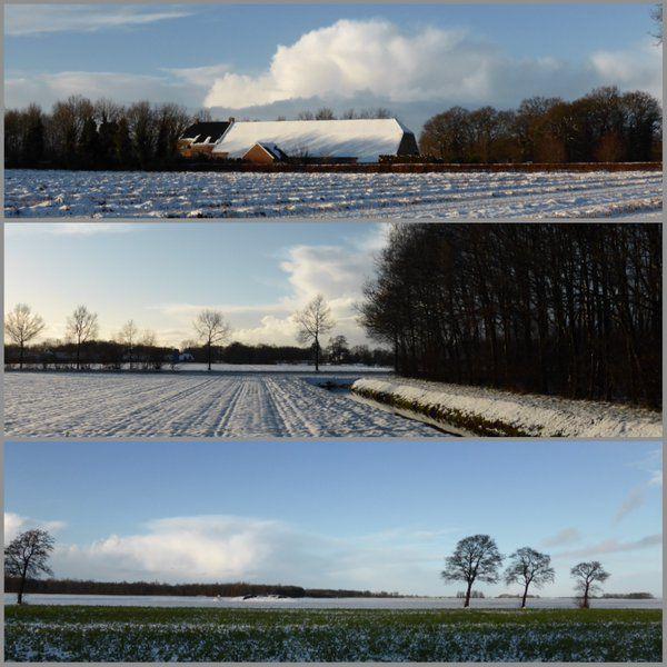Winter in Wedde #westerwolde
