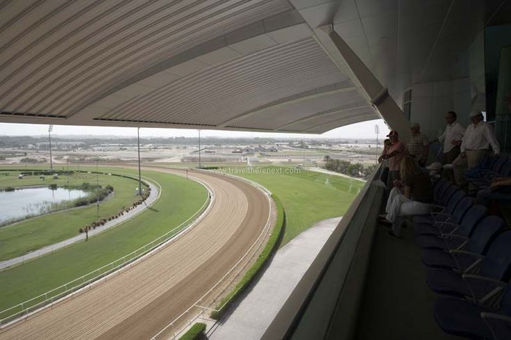 Dubai horse racing - View of the race course from the Millennium Grandstand  #uae #arab #dubai #horseracing #middleeast #adventure #experience #fun #travel #traveltherenext