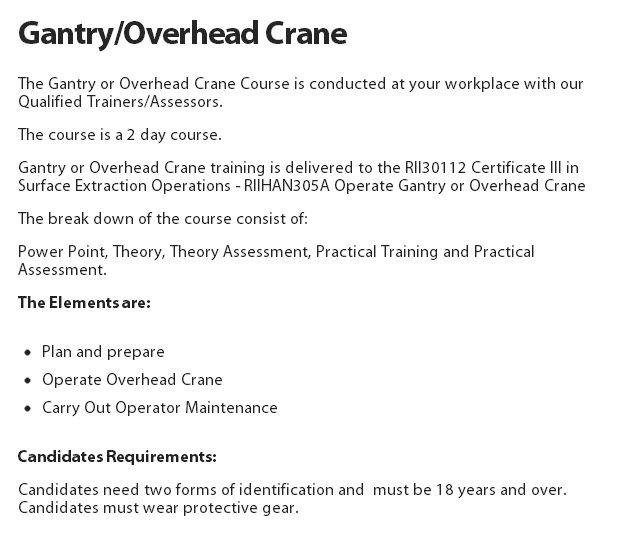 Gantry/Overhead Crane