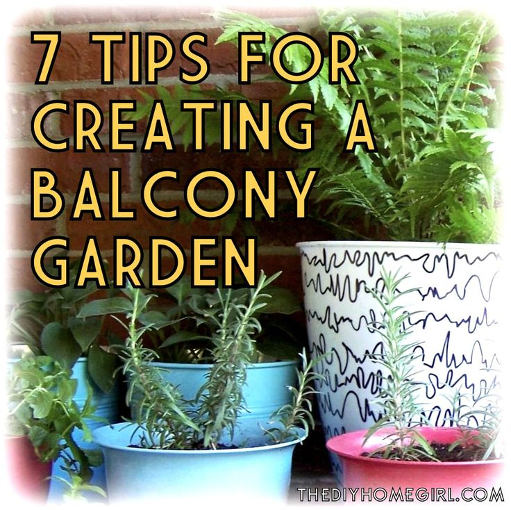 Wonderful 25 Best Ideas About Apartment Patio Gardens On Pinterest