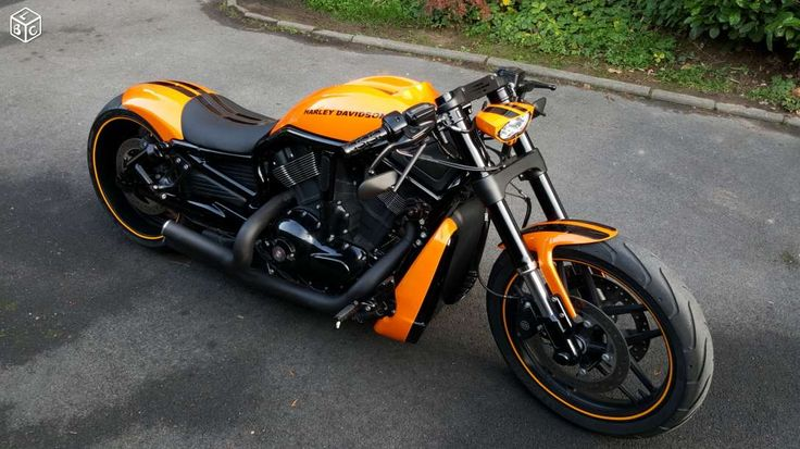 25 creative harley night rod ideas to discover and try on pinterest harley davidson night rod. Black Bedroom Furniture Sets. Home Design Ideas