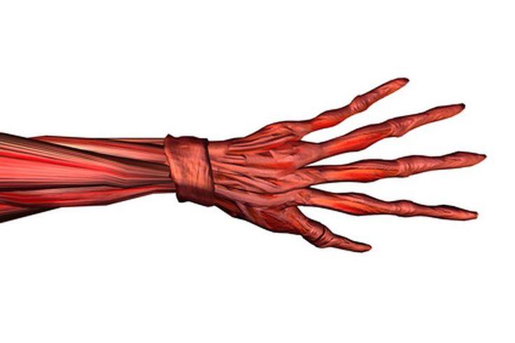 Hormigueo y entumecimiento en las manos y los dedos  | Muy Fitness