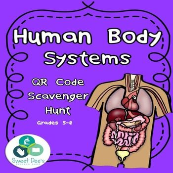 Explore the human body systems with this QR Code Scavenger Hunt!  Students will go on an adventure through the respiratory, digestive,…