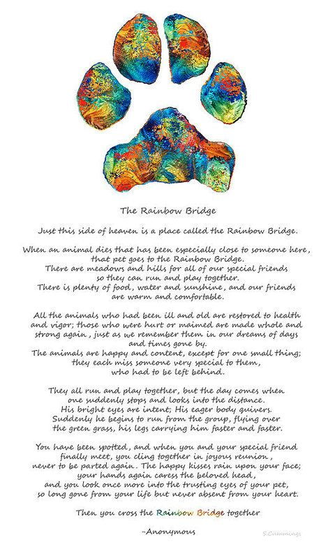 Rainbow Bridge Poem With Colorful Paw Print By Sharon Cummings Print by Sharon Cummings.  All prints are professionally printed, packaged, and shipped within 3 - 4 business days. Choose from multiple sizes and hundreds of frame and mat options.