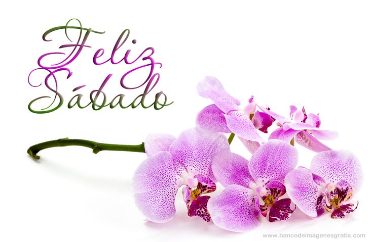 flores con mensajes positivos - Buscar con Google