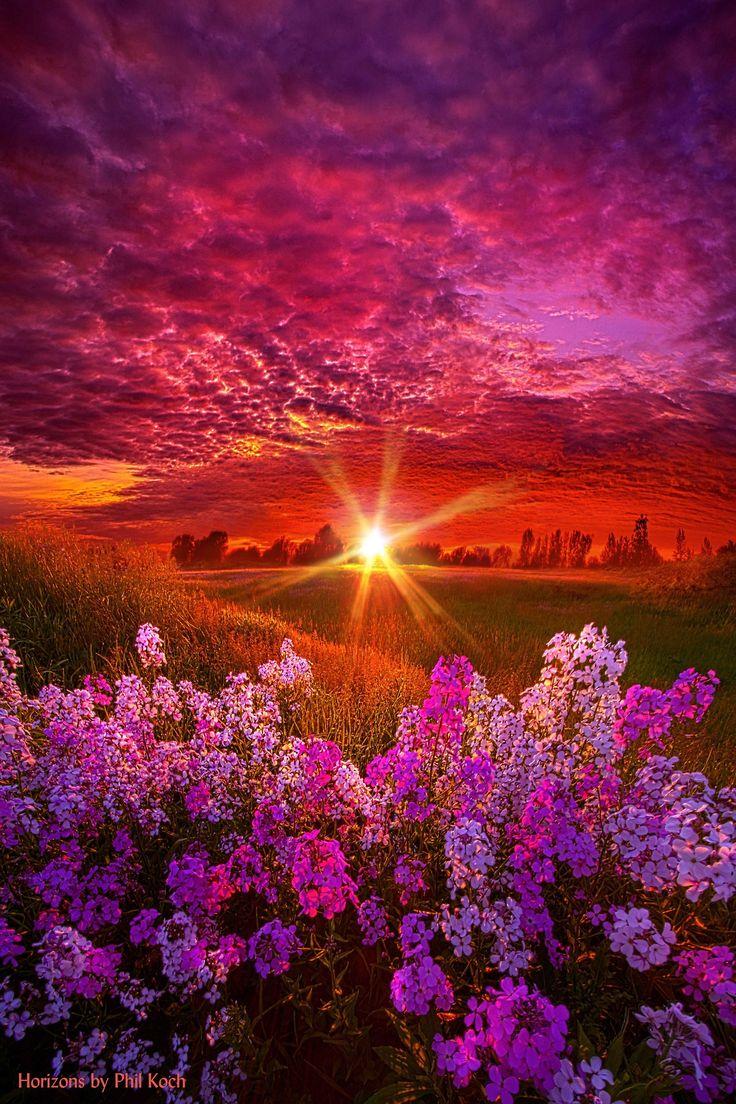 """The Everlasting"" Wisconsin Horizons By Phil Koch. http://phil-koch.artistwebsites.com"